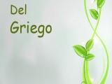 "ANDAR ""peripatéo"" περιπατέω y ""stoijéo"" στείχω (Del Griego)"